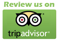 Write a review for us yelp icon png
